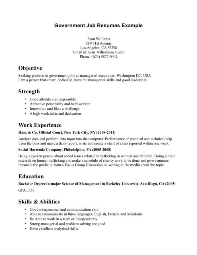 resume format for government job pdf examples template samples free evaluation software Resume Government Resume Samples