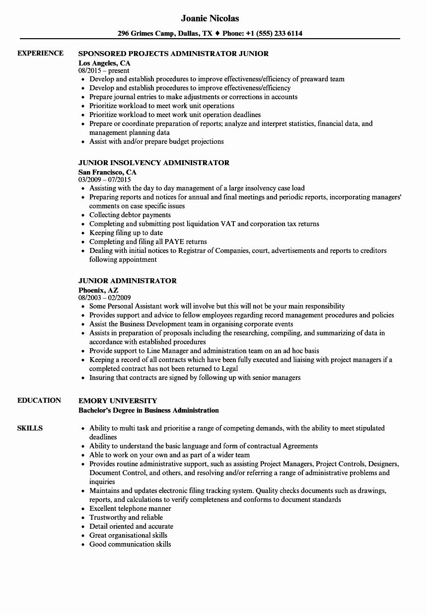 salesforce administrator resume examples best of junior samples manager customer service Resume Salesforce Admin Resume For 3 Years Experience