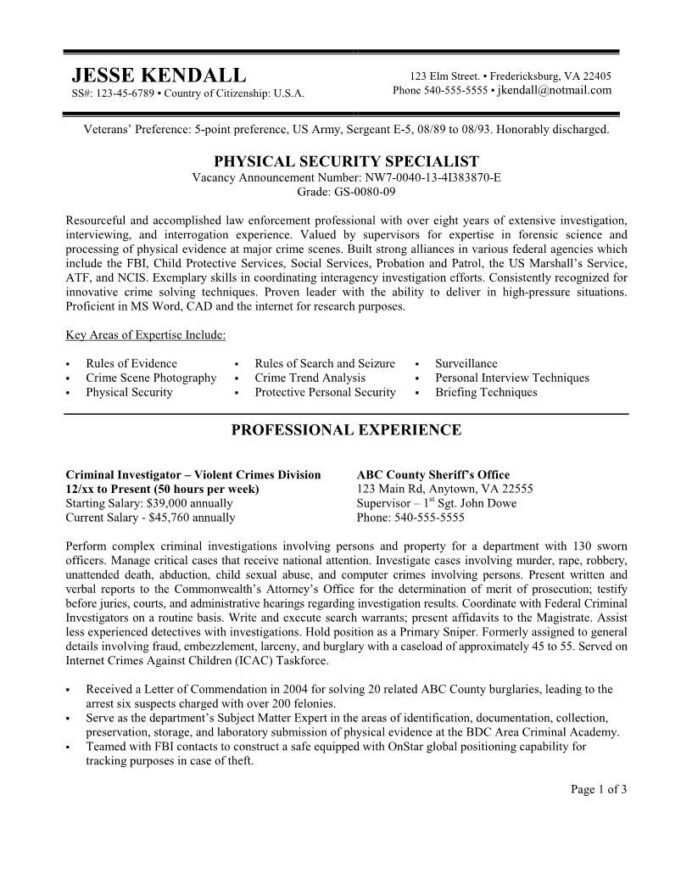 security resume federal example free sample job examples template for summer internship Resume Free Federal Resume Template