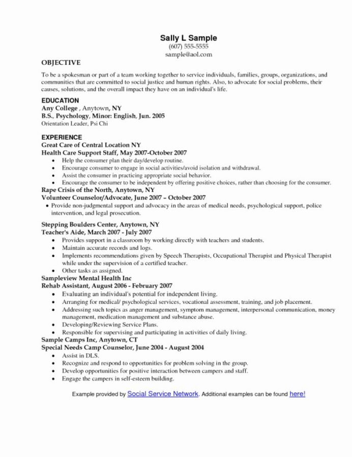 social work resume example fresh objective statement examples human rights creative Resume Human Rights Resume Objective