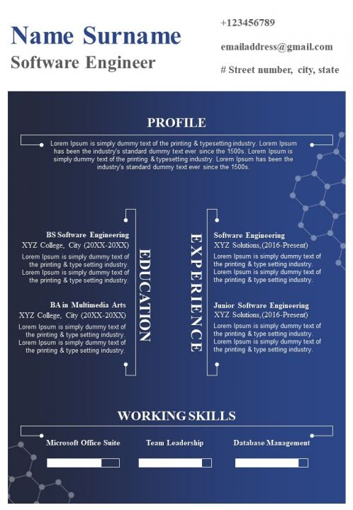 software engineer resume format with working skills powerpoint slides diagrams themes for Resume Resume Format For Software Engineer