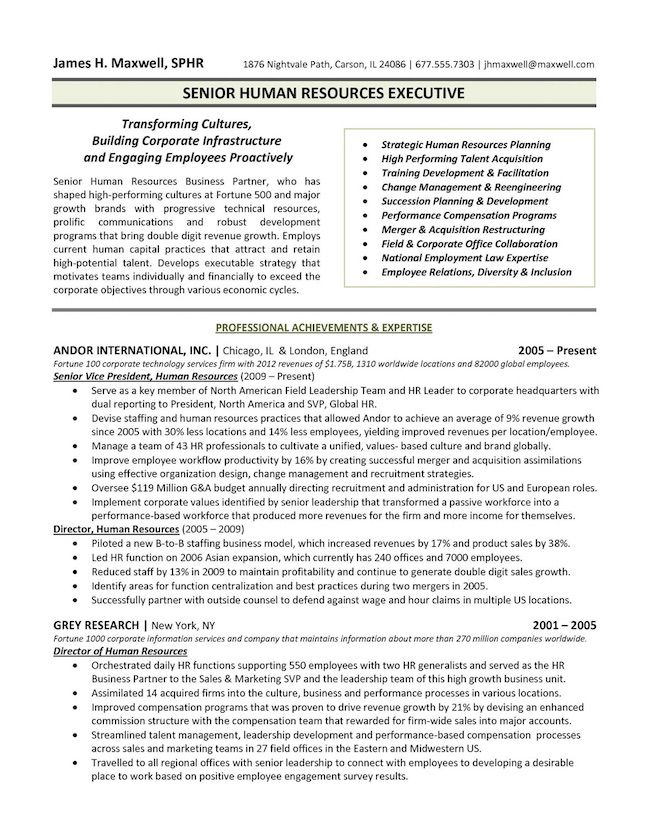the top executive resume examples written by professional recruiter template summary Resume Executive Summary Resume Example Template
