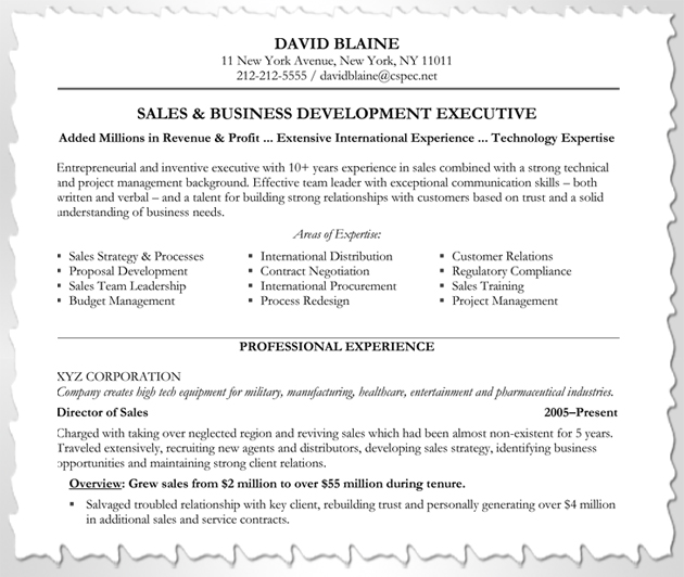 to customize your resume blog blue sky resumes areas of expertise sample professional Resume Areas Of Expertise Resume