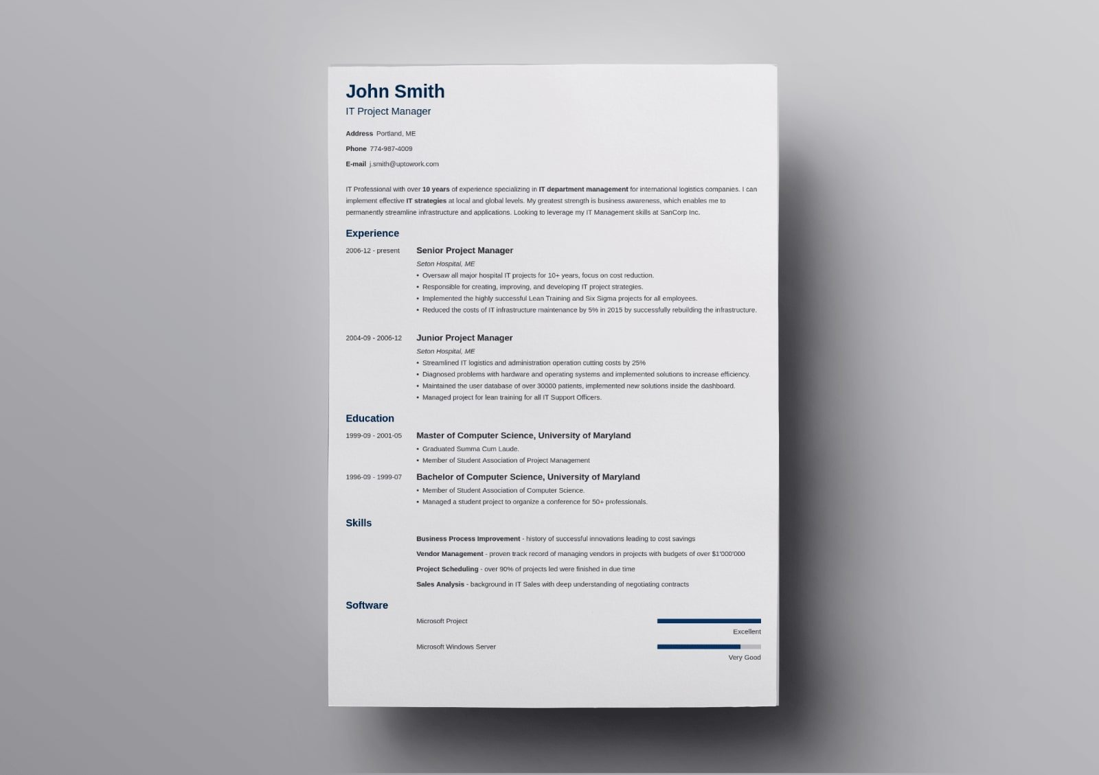 traditional resume template classic examples minimo combination sample data visualization Resume Traditional Resume Template