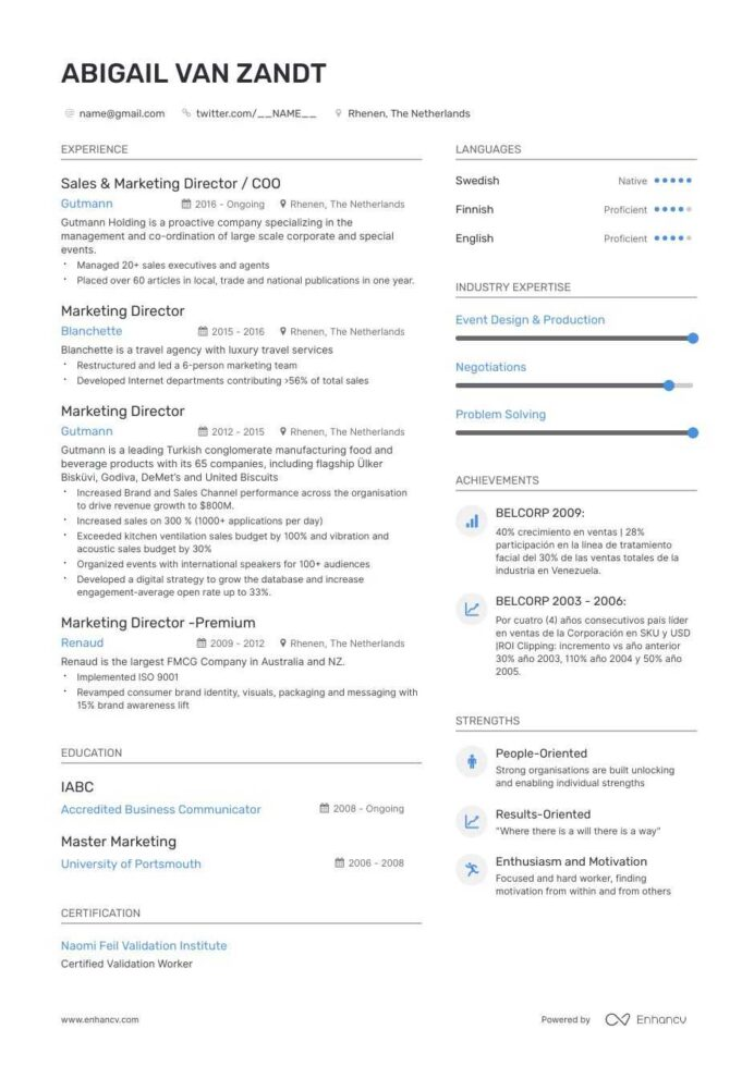 vp of marketing resume examples and skills you need to get hired vice president drafter Resume Vice President Of Marketing Resume