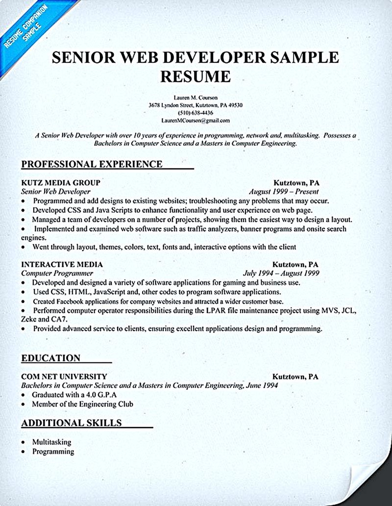 web developer resume sample and tips job examples objective for professional customer Resume Objective For Resume For Developer