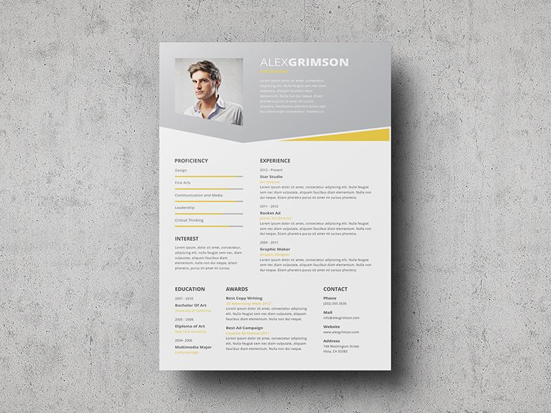 well designed resume examples for your inspiration wellness design graphic now fees apple Resume Well Designed Resume Examples