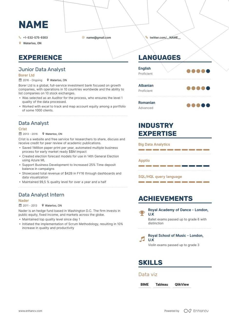 security analyst resume examples political candidate sample banking for freshers Resume Political Candidate Resume Sample India